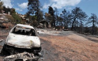 'Serious indications' Greek fire that killed 83 caused by arson