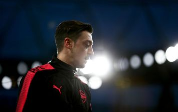 Mesut Ozil *finally* issues apology to that poor, confused dog
