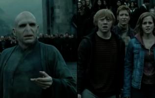 Hidden Voldemort detail in Half-Blood Prince is shocking Harry Potter fans