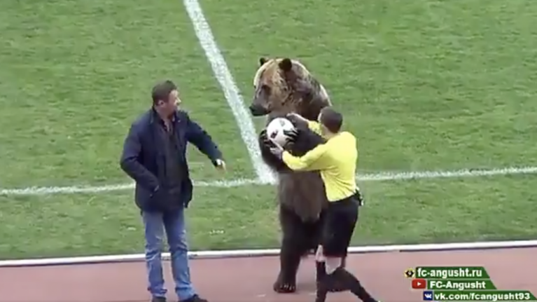 WATCH: Bear used to deliver match-ball to football game in Russia