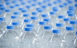 Scientists accidentally discover mutant enzyme which digests plastic
