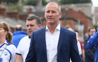 Stuart Lancaster tipped to succeed Joe Schmidt