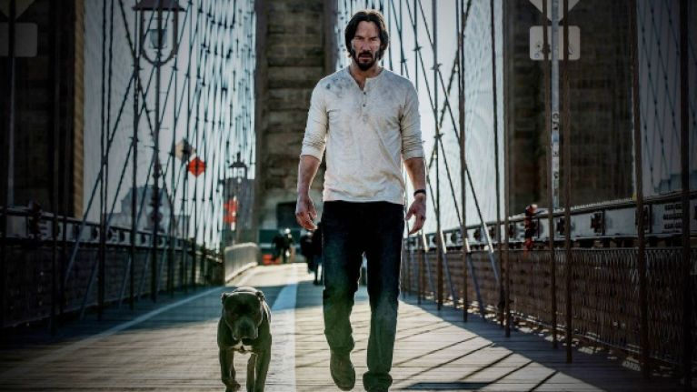 Here is your first official look at John Wick: Chapter 3