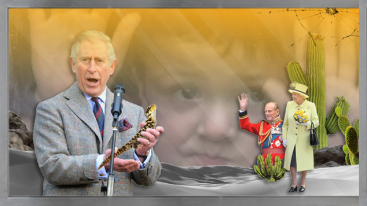 Ranking the members of the Royal Family by how likely they are to be a lizard