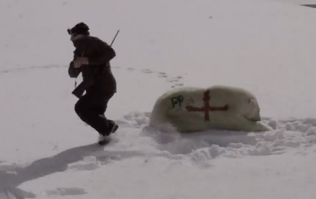 WATCH: Have Paddy Power really just spray-painted a polar bear with the England flag?