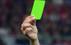 Referee brandishes first ever green card in a football match