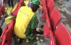 WATCH: Senegal fans spotted cleaning up after themselves after Poland victory