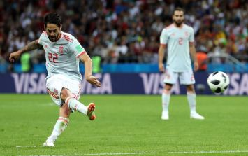 Spain star Isco comes to rescue of injured bird and escorts it off pitch during Iran game