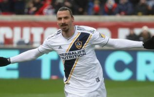 Zlatan Ibrahmović's latest tweet perfectly sums up his character