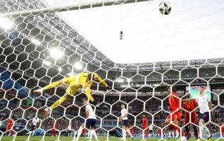 Jordan Pickford takes hilarious jab at Adnan Januzaj as he recalls World Cup wonder goal