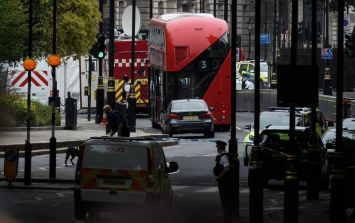 """Houses of Parliament barrier car crash is being treated as """"suspected terror attack"""""""