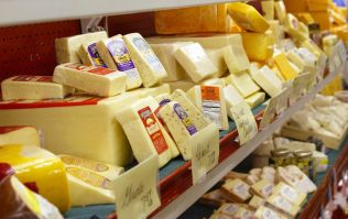 You can now be paid to be a professional cheese eater