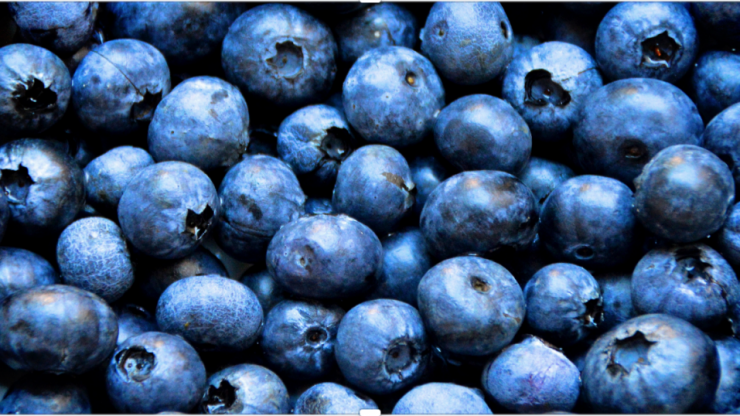 Why blueberries should be your new pre-workout