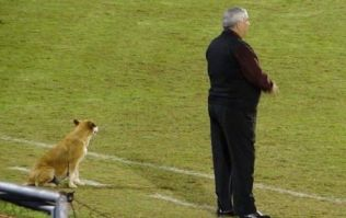 Meet the football manager whose assistant coach is a dog