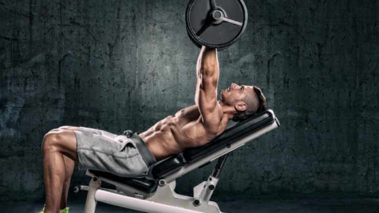Bench press or dumbbell press: which is better for you?