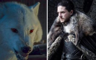 The beloved direwolf Ghost will appear in Game of Thrones Season 8