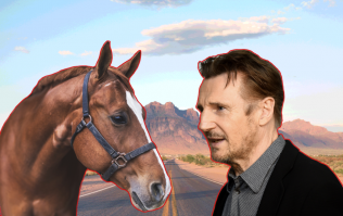 Exclusive interview with the horse that remembered Liam Neeson