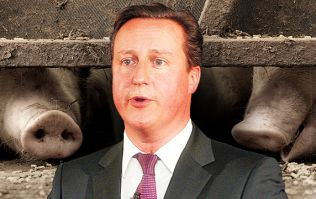 COMMENT: So David Cameron wants to return to frontline politics, does he?