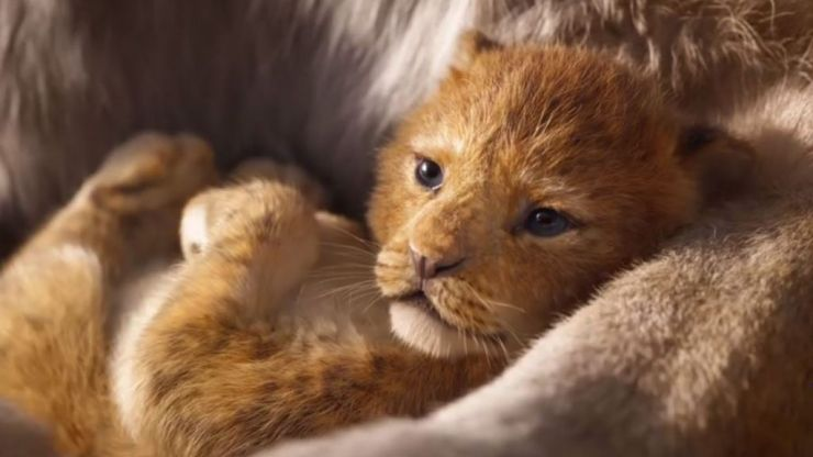 People aren't happy that the new Lion King is being called 'live action' - this is why