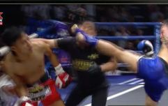WATCH: Muay Thai fighter stops referee and opponent with same fight-ending flurry