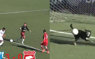 Very good boy makes very good save in South American football match