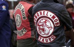 Notorious New Zealand biker gang guards mosque and performs haka during Friday prayers