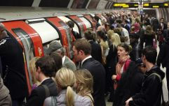 London Underground passengers made to stand so a cake could have a seat