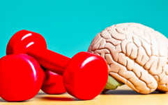 Lifting weights boosts your brain power and motivation, research shows