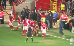 Charlton fan crunches own player during wild goal celebrations