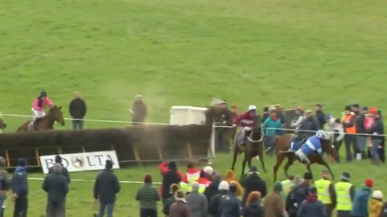 Stop what you're doing and behold the greatest horse-racing moment of 2019 sofar