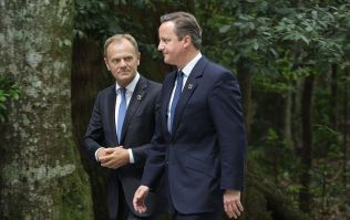 David Cameron never really believed he'd have to hold a Brexit referendum, says Donald Tusk