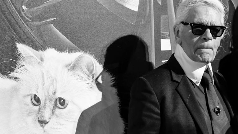 Karl Lagerfeld's cat Choupette 'to inherit' his £150m fortune