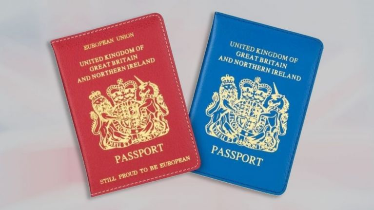 Poundland release blue and red passport covers