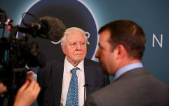 David Attenborough delivers stark warning to parliament about the climate crisis
