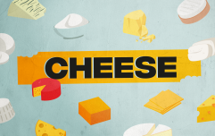 The definitive ranking of cheese from worst to best