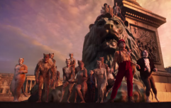 Ranking every cat in the Cats trailer by how utterly bizarre they are