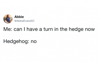 50 of the funniest tweets from 2019 (so far)