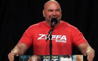 Dana White confirms post-summer boxing plans