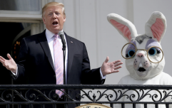 An in-depth analysis of the official White House Easter photographs