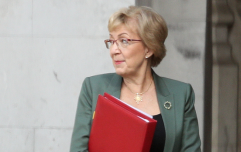 Andrea Leadsom quits government as pressure mounts on Theresa May