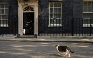 Almost half the country want the new prime minister to hold a general election