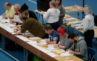 Voter writes 'w*nk' all over ballot paper, puts 'not w*nk' next to Greens, deemed acceptable as a vote
