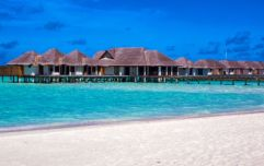 Luxury resort in the Maldives looking for someone to look after their turtles