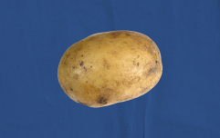 Ranking the best and worst forms of potato in the world