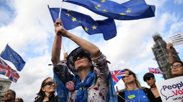 Leave and Remain supporters clash outside Westminster