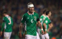 What is Glenn Whelan? An endangered species fact file