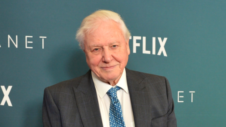 Sir David Attenborough describes the most heartbreaking moment of his 60-year career