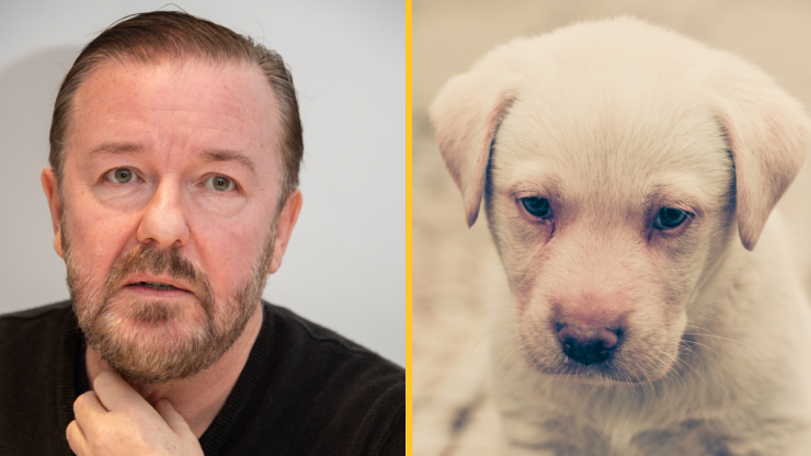 Ricky Gervais lobbies for ban on all animal experiments in UK