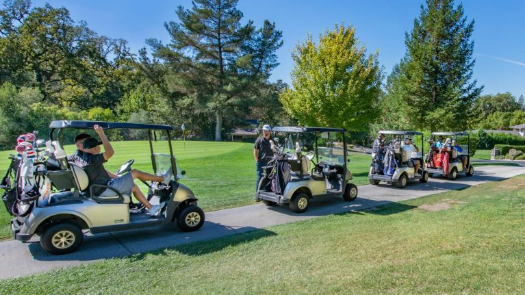 Golf Cart: Drunken woman crashes and has been arrested