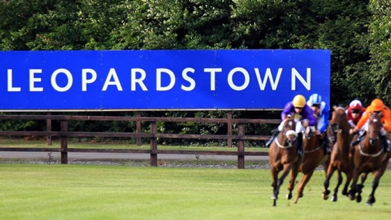 Ihrb Investigating Betting Patterns For Two Leopardstown Races
